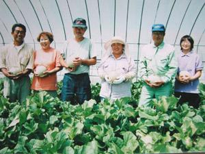 苫前町農協特定蔬菜生産部会
